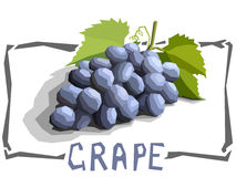 Vector simple illustration of grapes. Royalty Free Stock Images