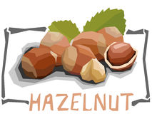 Vector simple illustration of hazelnut. Royalty Free Stock Photos
