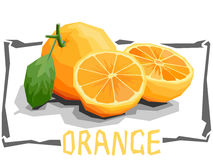Vector simple illustration of oranges. Stock Images