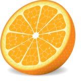 Vector sinaasappel stock fotografie