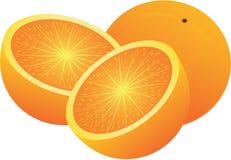 Vector sinaasappelen Stock Afbeelding