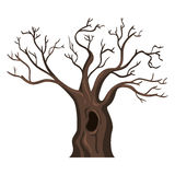 Vector Single Cartoon Brown Bare Oak Tree Stock Images