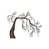 Vector Single Cartoon Brown Bare Tree. On White Background Royalty Free Stock Photography