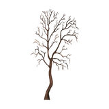 Vector Single Cartoon Brown Bare Tree. On White Background Stock Photos