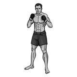 Vector Single Cartoon MMA Fighter. On White Background Stock Photos