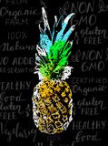 Vector Single Sketch Pineapple. On handwritten background with healthy food words and colored with inkblots royalty free illustration