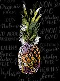 Vector Single Sketch Pineapple. Isolated on handwritten background with healthy food words and colored with inkblots royalty free illustration