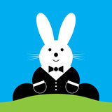 Vector sitting smiling Easter bunny with suit Royalty Free Stock Images