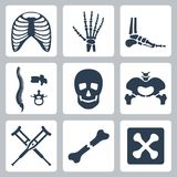 Vector skeleton icons set Royalty Free Stock Images