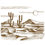 Vector sketch America landscape with cactus Stock Photos