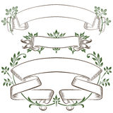 Vector sketch - banner in the leaves of plants in different vers Royalty Free Stock Photography
