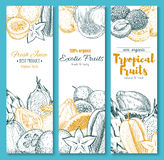 Vector Sketch Banners Of Exotic Tropical Fruits Royalty Free Stock Photo