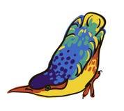 Sketch of bird, watercolor. Vector sketch of bird, watercolor Stock Photos