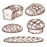 Vector sketch bread icons of bakery shop. Bread sketch icons for bakery shop. Vector isolated set of wheat bagel or rye bun and croissant, baked fresh loaf pie stock illustration
