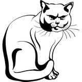Vector Sketch of the british cat Stock Photos