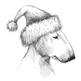 Vector sketch of Bull terrier or Bullterrier dog head profile in Santa Claus holiday hat in black isolated on white background. Stock Photos