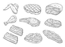 Vector sketch butchery meat chicken icons. Meat and chicken sketch icons. Vector isolated symbols of fresh or grill chicken leg and wing, pork bacon ham and beef Royalty Free Stock Image