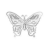 Vector sketch butterfly Stock Image
