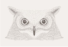 Vector sketch decorative owl illustration Royalty Free Stock Photography