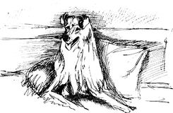 Vector sketch of dog. For design Royalty Free Stock Photos