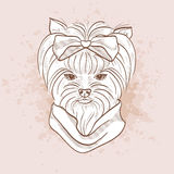 Vector sketch of elegant dog Stock Photo