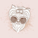 Vector sketch of elegant dog Royalty Free Stock Images