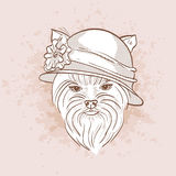 Vector sketch of elegant dog Stock Photography