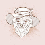 Vector sketch of elegant dog Royalty Free Stock Photos