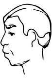 Vector sketch of the face of an adult male Royalty Free Stock Photos