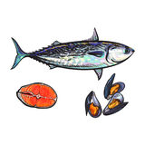 Vector sketch fish tuna, salmon steak , mussels. Vector sketch cartoon sea fish tuna, salmon red fish fillet, mussels set. Isolated illustration on a white Royalty Free Stock Photo