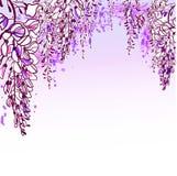 Vector sketch flower background card wisteria violet stock illustration