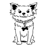 Vector sketch funny chihuahua dog sitting Stock Images