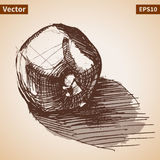 Vector sketch of garnet. Illustration for your design Royalty Free Stock Photos