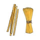 Vector sketch hand drawn italian pasta types set. stock illustration
