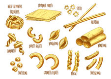 Vector sketch icons of Italian pasta variety. Italian pasta vector sketch set of Italian nidi di rondi or tagliatelle, lasagna sheets and stelle, bucatini and Stock Images