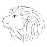 Vector sketch lion Stock Images