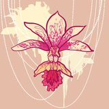 Vector sketch orchid with splash background Royalty Free Stock Photo