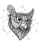 Vector Sketch of Owl Head. Black and White Vector Sketch of Owl Head vector illustration