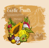 Vector sketch poster exotic tropical fresh fruits Royalty Free Stock Images