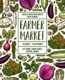 Vector Sketch Poster For Vegetables Farm Market