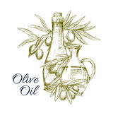 Vector sketch poster of olives and olive oil Royalty Free Stock Photo