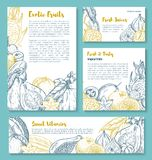 Vector sketch posters of tropical exotic fruits Royalty Free Stock Photos