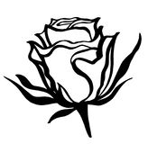 Vector sketch of rose. On white background Royalty Free Stock Photography