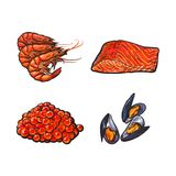 Vector sketch seafood set. Vector sketch sea salmon fish meat fillet steak without skin side view, mussels, lobsters caviar set.  illustration on a white Royalty Free Stock Image
