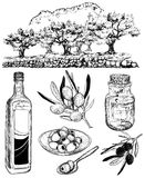 Vector sketch set of olive products Royalty Free Stock Image