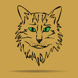 Vector sketch of a stylized kitten's face. Vector sketch of a stylized, kitten's face Stock Image