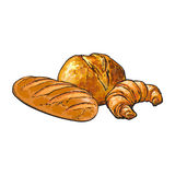 Vector sketch white loaf bread, Croissant set. Vector sketch fresh white loaf bread, Croissant set . Detailed hand drawn isolated illustration on a white royalty free illustration