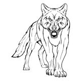 Vector sketch of a wolf. Royalty Free Stock Photography