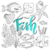 Vector sketches fish set. Hand drawn vector marine set. Adult coloring book page Royalty Free Stock Photo