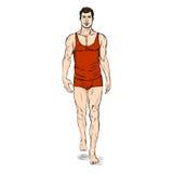 Vector SketchFashion Male Model in Underwear Royalty Free Stock Photos